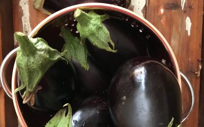 Eggplant Pesto